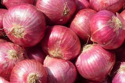Onions Can Make You Sick