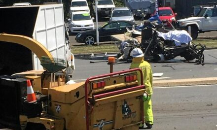 Horrific scene as driver killed in Gympie crash