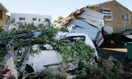 Roofs torn off and 16,000 lose power in south-east Queensland storm
