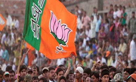 Gujarati NRIs reach home state to boost BJP