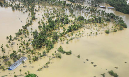 Death Toll 370, Over 7 Lakh Displaced; Kerala Now Shifts Focus on Recovery