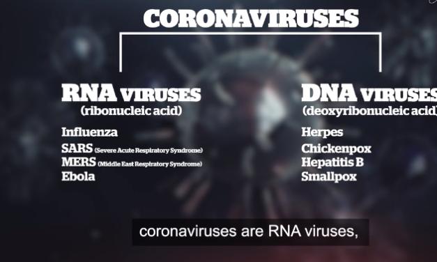 Hundreds more coronavirus tests to be done in Brisbane