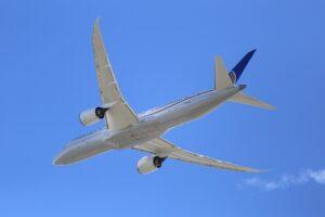 787 dreamliner UAE flights