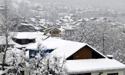Intense cold amid dry spell till Jan 31 in J&K, Ladakh