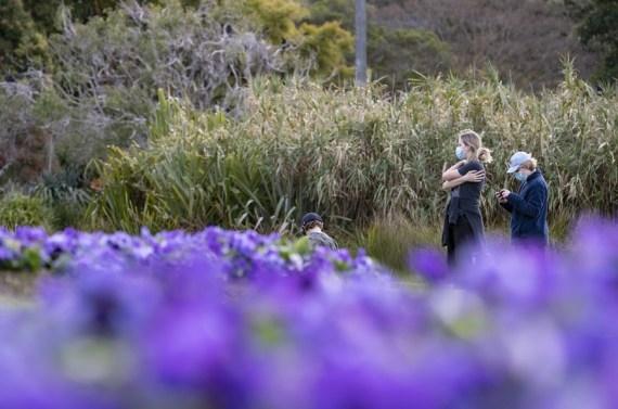 Covid lockdown to end in Australian capital